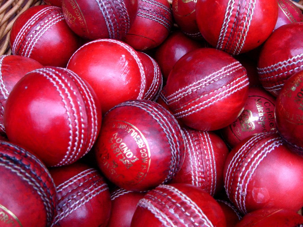 Cricket and Rotten Company Culture